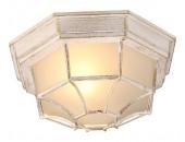 Потолочный уличный светильник ArteLamp A3121PF-1WG