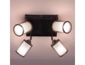 Люстра потолочная спот Citilux CL535541 Робин темносерый
