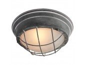 Светильник потолочный Lussole Loft LSP-9881